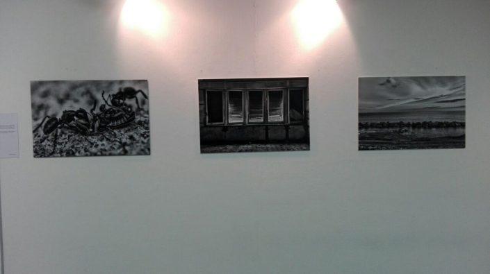 Mostra 'Otto Sguardi 2016' by Fuori Fuoco al Centro Civico Buranello